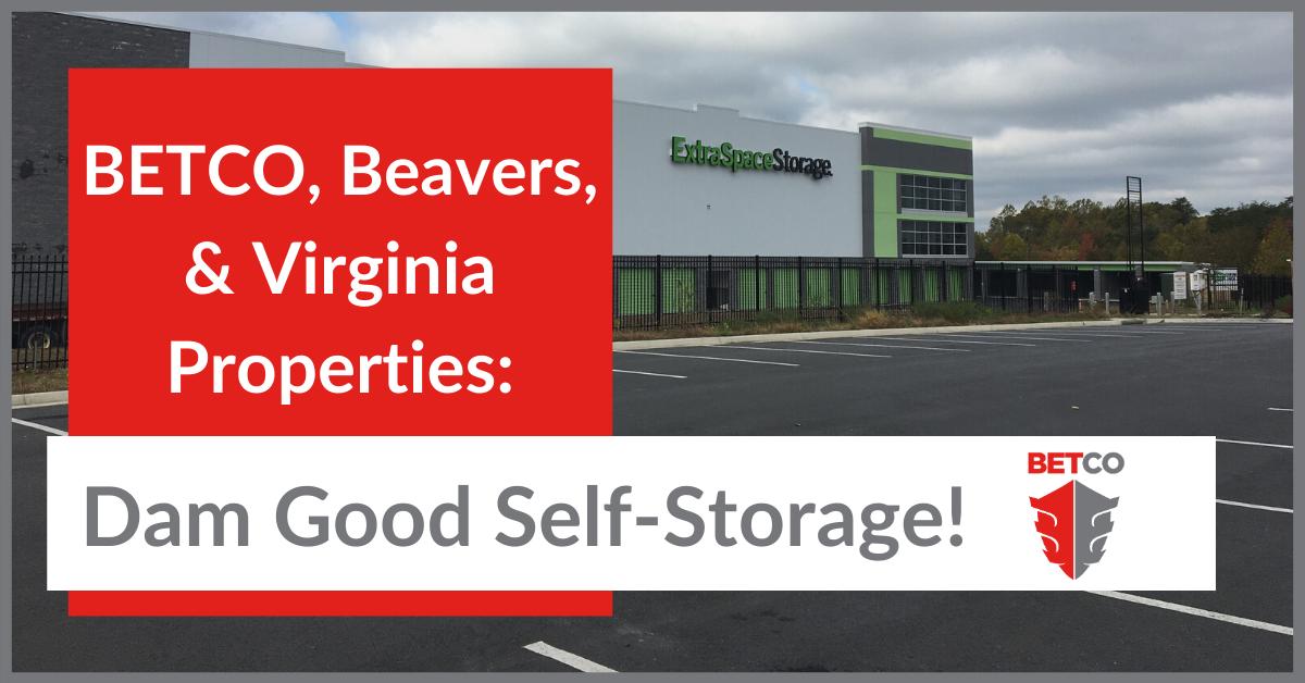 BETCO, Beavers & Virginia Properties: Dam Good Self-Storage